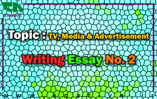 4 Paragraph Essay On A Career